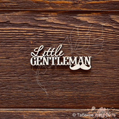 Little  gentleman №2 (6,4х2,7), CB702
