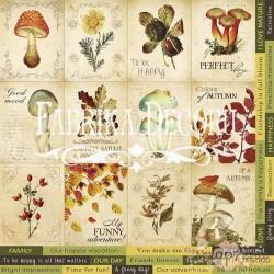 """Набор карточек для декорирования. Набор №2 """"Botany autumn""""."""