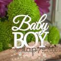 """Чипборд надпись """"Baby Boy"""" Hi-359"""