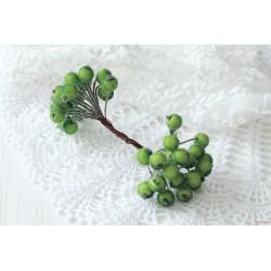 Декоративные ягодки в обсыпке, цвет зеленый, 1 связка из 10 двусторонних веточек (20ягодок)