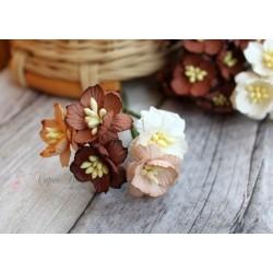 Букетик из цветов вишни, кремово-коричневые тона, 2.5см, 5шт.