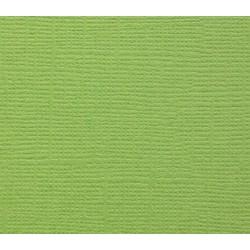 Кардсток текстурированный СВЕЖАЯ ЗЕЛЕНЬ, 30,5*30,5 см, 1 лист, 216 гр/м