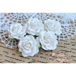 Роза Шпалера, цвет белый, 1 цветочек
