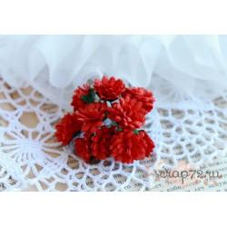 Астра, красныйй,  15мм, 1 цветочек