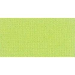 Кардсток текстурированный Салатовый, 30,5*30,5 см, 216 гр/м