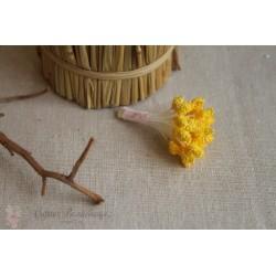 Тычинки махровые, желтые, 30шт.