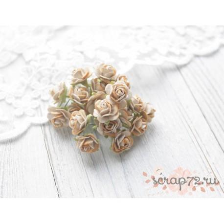 Роза Мальбери, цвет бежевый с коричневой окантовкой, 15мм, 1 цветок