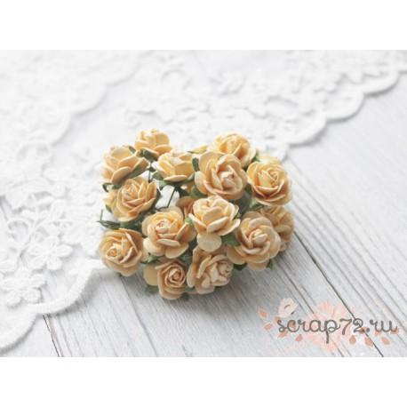 Роза Мальбери, цвет желтый, 1 цветок