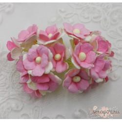 Лютики двухтонные нежно розовые с белым, 1,5 см, 5 цветочков