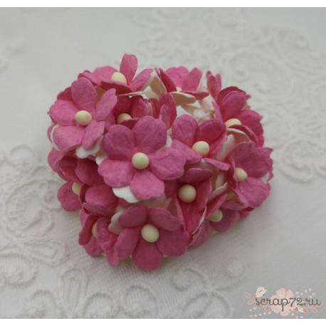 Лютики двухтонные бело-розовые, 1,5 см, 5 цветочков