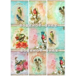 "Карточки ""Птички-1"", А4"