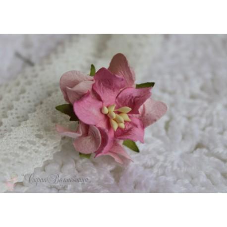 Гардении кудрявые,  цвет светло-розовый, 4 см, 1 шт.