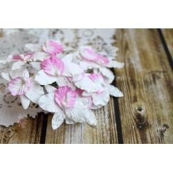 Орхидея, цвет белый с нежно-розовым лепестком, 4 см, 1шт.