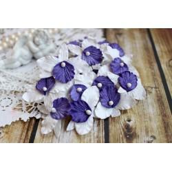 Орхидея, цвет белый с фиолетовым лепестком, 4 см, 1шт.
