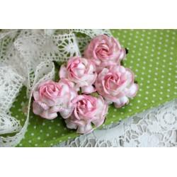 Чайная роза, цвет белый с розовой окантовкой, 4см, 1шт