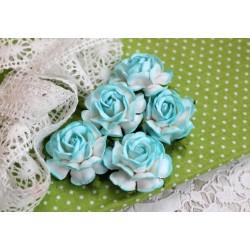 Чайная роза, цвет белый с бирюзовой окантовкой, 4см, 1шт