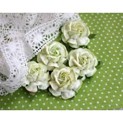 Чайная роза, цвет белый с салатовой окантовкой, 4см, 1шт