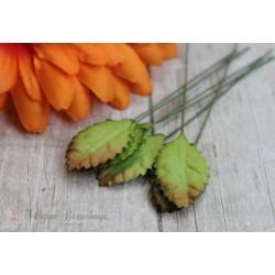 Листочки маленькие, цвет зеленый с бырым кончиком, 3см, 10шт.