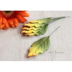 Листочки плюща, цвет зеленый с желто-коричневой окантовкой, 6см, 10шт.