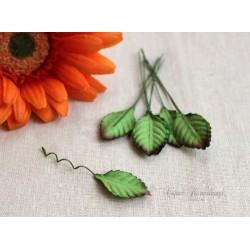 Листочки розы маленькие, цвет зеленый с бурым кончиком, 2,3см, 10шт.