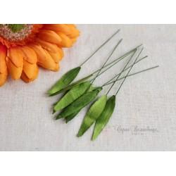 Листочки Капельки, цвет светло-зеленый, 0.8*4см, 10шт.