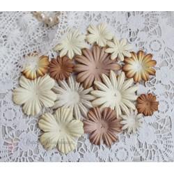 Набор цветочков, кремовые тона, от 5см до 2см, 14шт.