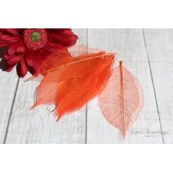 Скелетированные листья, цвет насыщенный оранжевый, от 2.5 до 7.5см, 5шт.