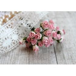 Роза кудрявая в бутонах, 8-10мм, цвет белый c розовой окантовкой, 1шт.