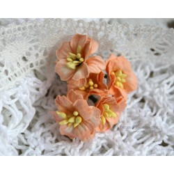 Цветок яблони, цвет персиковый, 2см, 1 цветочек