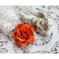 Роза Шпалера, цвет ярко-оранжевый, 1цветок