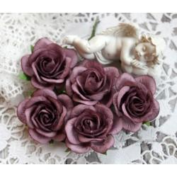 Роза Шпалера, цвет фиолетовый, 1цветок