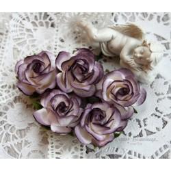 Роза Шпалера, цвет белый с фиолетовой окантовкой, 1цветок