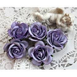 Роза Шпалера, цвет сиреневый, 1цветок