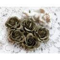 Роза Шпалера, цвет болотный, 35мм, 1цветок