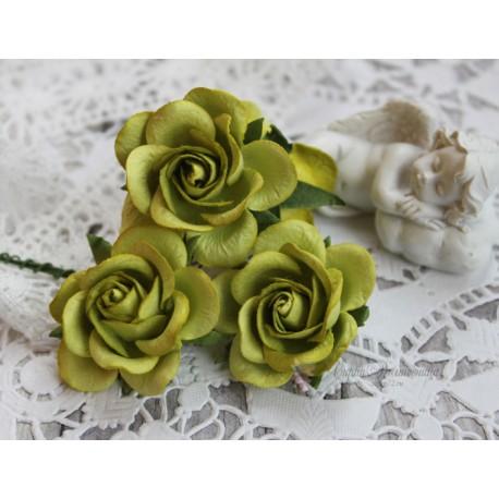 Роза Шпалера, цвет зеленый, 35мм, 1цветок