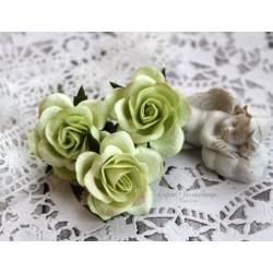 Роза Шпалера, цвет салатовый, 1цветок