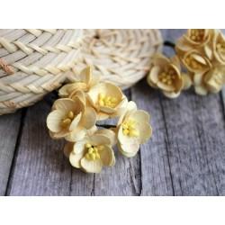 Цветы вишни, цвет кремовый, 2.5см, 1цветок