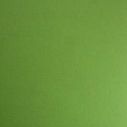 Кардсток текстурированный, цвет салатовый, 30*30см, 250 гр/м