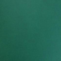 Кардсток текстурированный, цвет зеленый, 30*30см, 250 гр/м