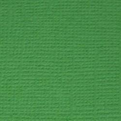 Кардсток текстурированный Лесной папоротник (т.зелёный), 30,5*30,5 см, 216 гр/м, 1л.