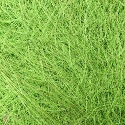 Сизалевое волокно, цвет светло-зеленый, 20 г ± 3 г