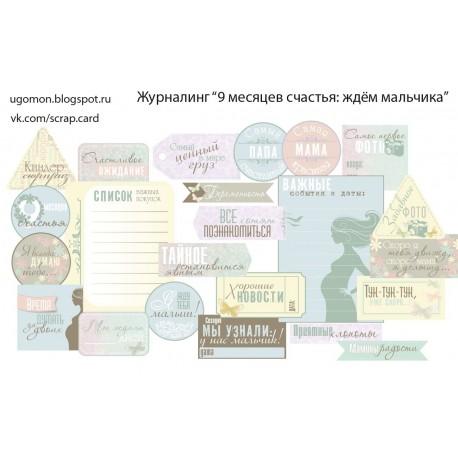 """Карточки """"9 мес счастья (мальчик)"""", А4, 230гр"""