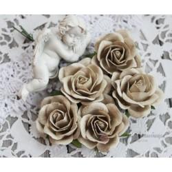 Роза Шпалера, цвет серый, 1шт