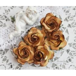 Роза Шпалера, цвет кокао-шоколад, 1шт