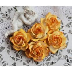 Роза Шпалера, цвет желтый, 1шт