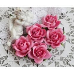 Роза Шпалера, цвет темно-розовый, шт