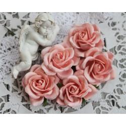 Роза Шпалера, цвет розовый, 1шт