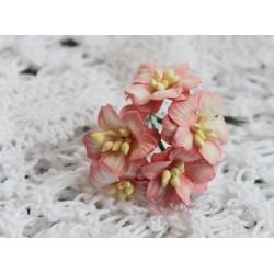 Цветок яблони, цвет белый с розовой окантовкой, 2см, 1 цветочек