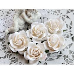 Роза Шпалера, цвет белый, 1шт