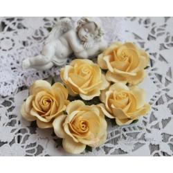 Роза Шпалера, цвет светло-желтый, 1шт